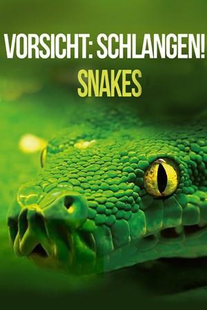Cover Vorsicht: Schlangen! Snakes